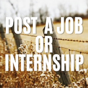 Post a Job or Internship