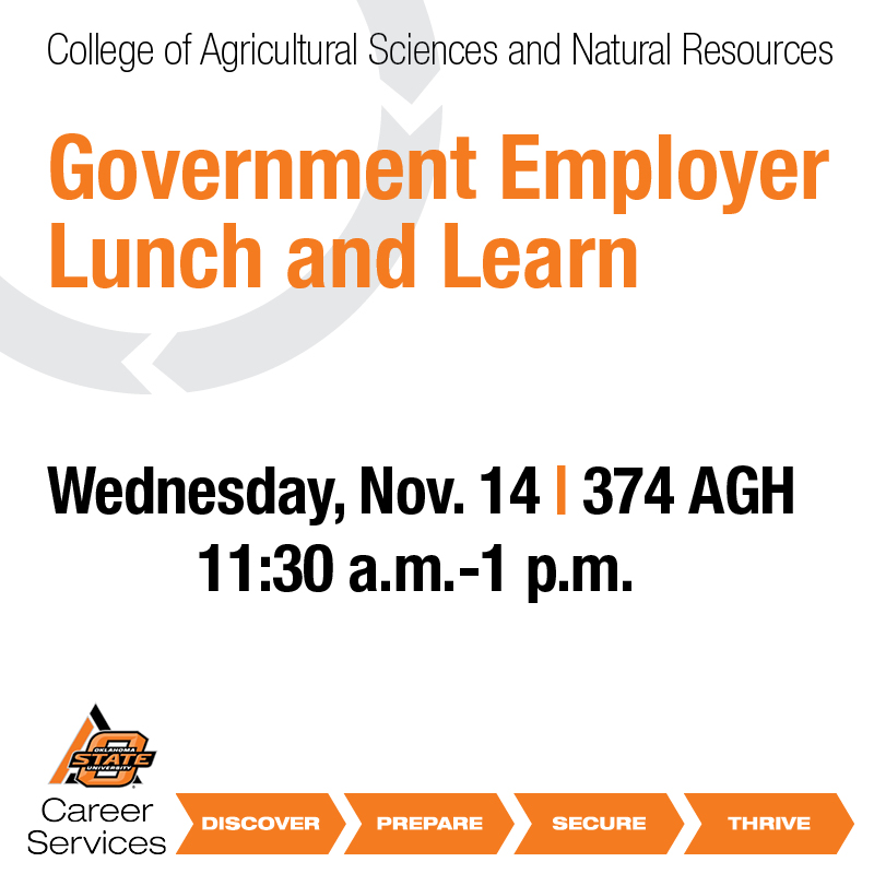 Government Employer Lunch and Learn